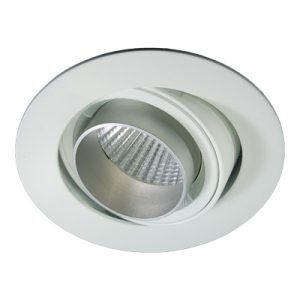 Phos Snoot LED 12w adjustable downlight