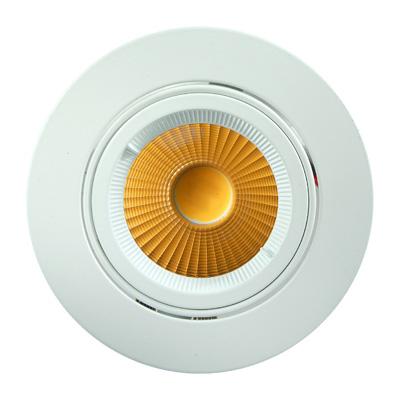 Phos adjustable 18w downlight